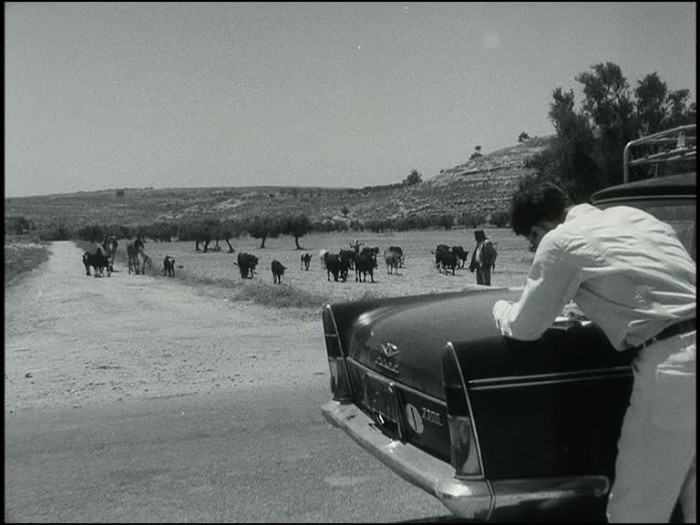 Still from Location Hunting in Palestine | ©1964 Alfredo Bini; ©2003 RIPLEY'S FILM Srl. All rights reserved.