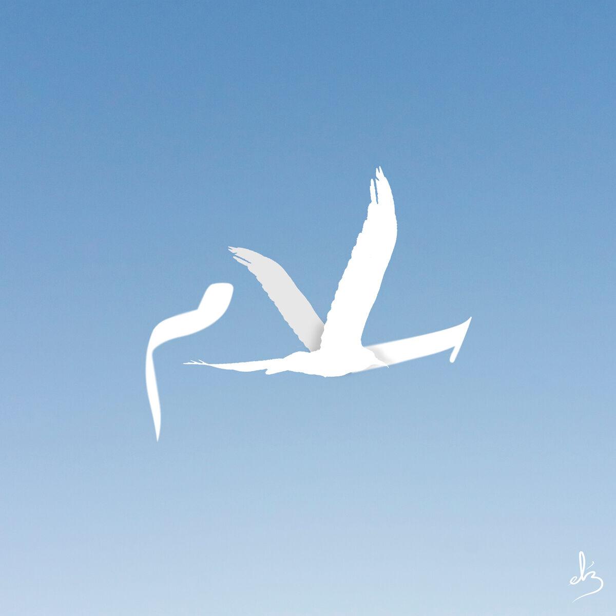 Graphic cover artwork