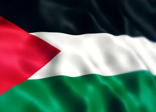 A close up of the Palestinian flag
